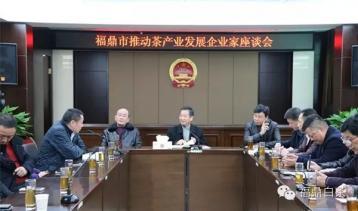 福鼎市召开推动茶产业发展企业家座谈会