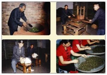 祁门红茶的手工制作工艺|手工红茶制作