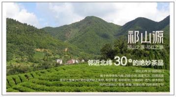 省茶业学会助力祁红产业发展|红茶新闻