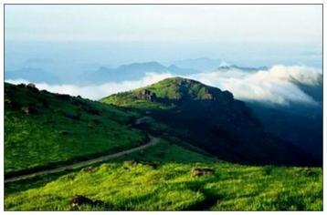 武夷山是世界红茶的发源地|正山小种