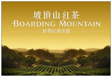 斯里兰卡红茶图片|坡顶山伯爵红茶产品展示