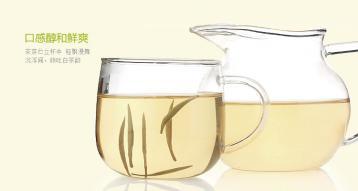 白茶是什么茶|白茶介绍