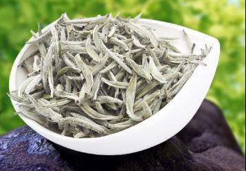 为什么白茶茶叶里有许多白色绒毛?