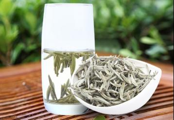 如何鉴别白茶的质量|白茶品鉴