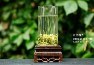 天目湖白茶的功效与作用|白茶功效
