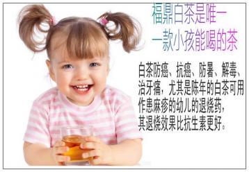 白茶为什么适合小孩子喝?|白茶功效