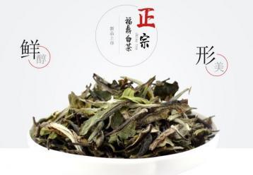白牡丹白茶简介|福建白茶种类