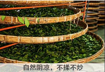 白牡丹白茶加工工艺|白茶制作