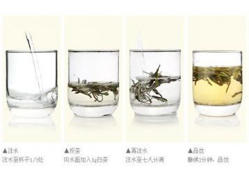 白牡丹白茶冲泡方法|白茶泡法