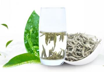 教你如何选购白茶|白茶鉴别