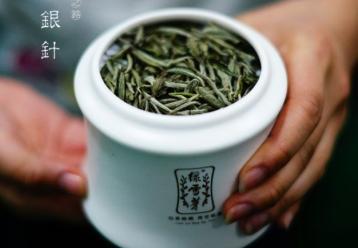 在哪里可以购买好的白茶|白茶选购