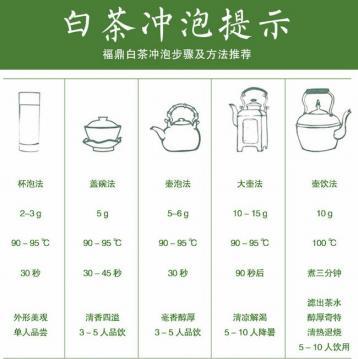 福鼎白茶的五种冲泡方法|白茶泡法