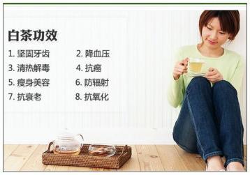 福鼎白茶的功效与作用有哪些?