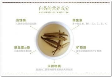 白茶的营养成分及收藏价值|白茶图片资料