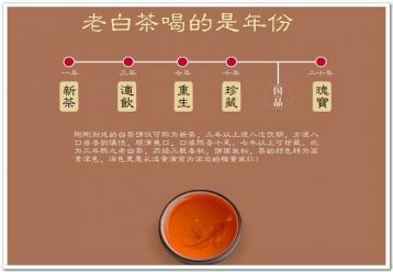 老白茶喝的是年份|老白茶图片素材