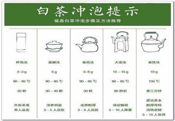 福鼎白茶冲泡方法|白茶泡法图片