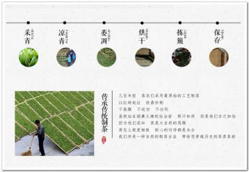 福鼎白茶传统制作工艺流程图|白茶图片