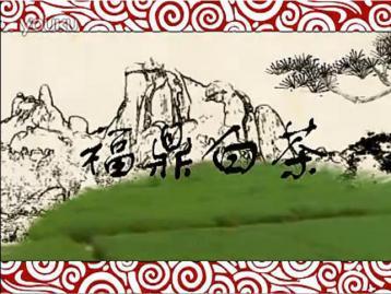 电视专题片《福鼎白茶》|白茶视频节目