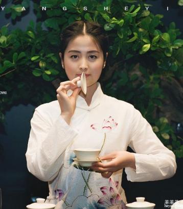 福鼎白茶第6期《白毫银针的冲泡与品鉴》