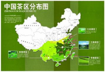 中国十大名茶知识|茶文化