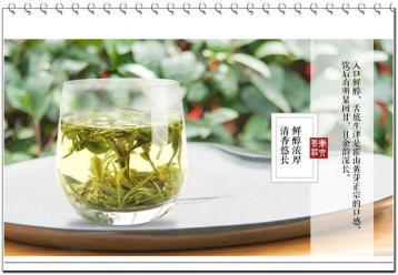 黄茶消脂减肥吗?|黄茶减肥功效