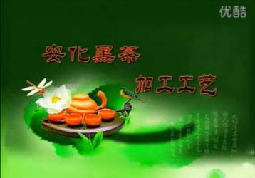 安化黑茶加工工艺|安化黑茶视频