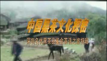 中国黑茶文化探密|黑茶视频