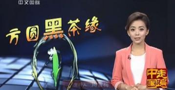 方圆黑茶缘--走遍中国 2014|黑茶视频