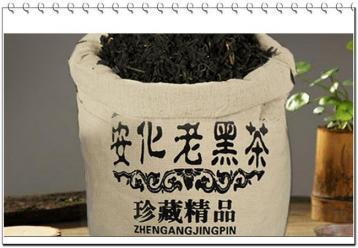 安化黑茶要防止重蹈普洱茶覆辙|黑茶新闻