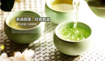 哪些人群不宜喝茉莉花茶|花茶百科