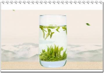 辨别优质绿茶的3个小技巧|绿茶品鉴