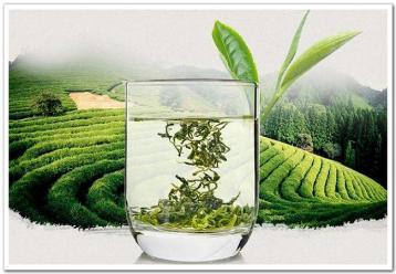 9大功效 常喝绿茶好处多|绿茶资讯