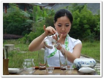 绿茶茶艺步骤|绿茶茶艺知识