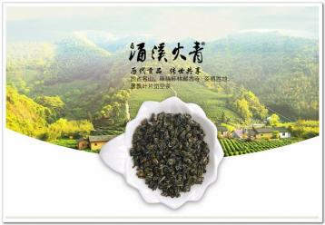 涌溪火青茶历史记载|绿茶文化