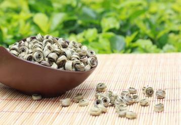 云南绿茶及其种类介绍|绿茶品种
