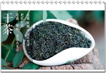 崂山绿茶图片|绿茶茶叶图片