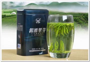 湄潭翠芽茶叶图片|绿茶图片资料