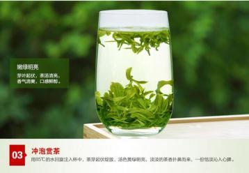 信阳毛尖茶图片|绿茶图片资料
