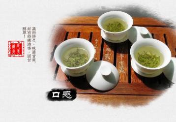涌溪火青茶叶图片展示|绿茶图片