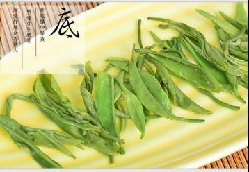 都匀毛尖的制作工艺|绿茶制作