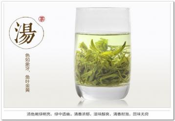 如何选购优质的黄山毛峰|绿茶选购