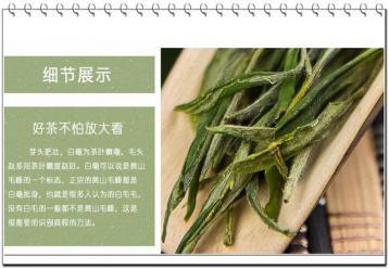 黄山毛峰茶的鉴别|如何分辨好的黄山毛峰呢?