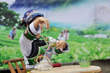 日照绿茶的冲泡方法|绿茶冲泡