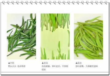 蒸青绿茶的冲泡方法