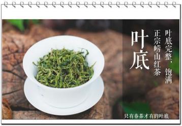 崂山绿茶功效作用|绿茶功效