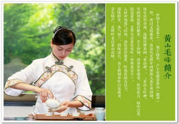 黄山毛峰的功效与作用|绿茶