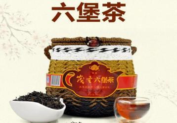 广西六堡茶|黑茶品种