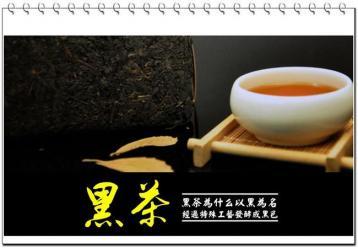 对于黑茶,您知道多少?|黑茶基础知识
