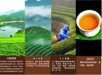 什么是黑茶?黑茶有哪些种类|黑茶知识