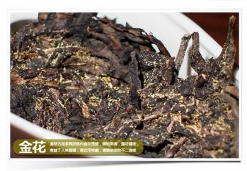 老黑茶与新黑茶有什么区别?|黑茶知识